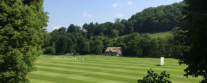 Wiltshire cricket pitch