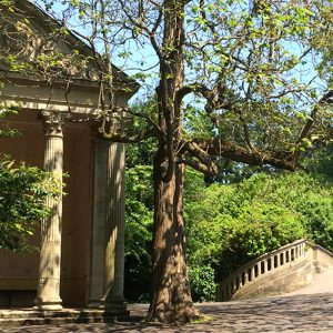 A park in Bath